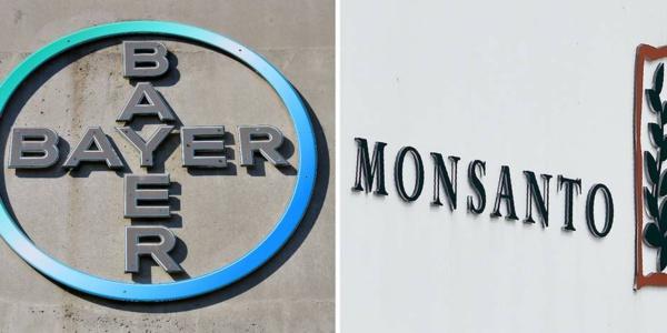 Bayer annonce le rachat de Monsanto pour 66 milliards de dollars