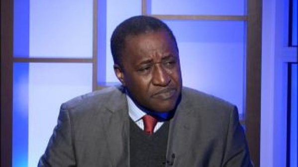 ADAMA GAYE - Macky Sall devait éloigner Frank Timis de notre pot de miel