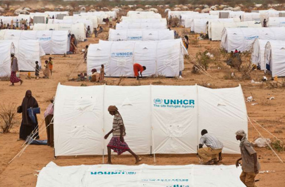 Le HCR appelle aux dons pour abriter les civils fuyant Mossoul