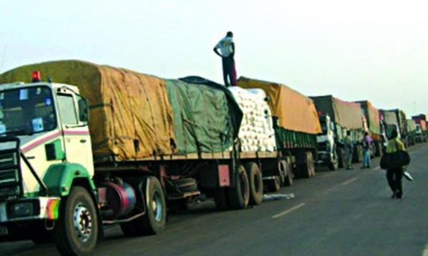 ZONE CEDEAO - Hausse de 39,8% des exportations sénégalaises sur la période 2010-2014