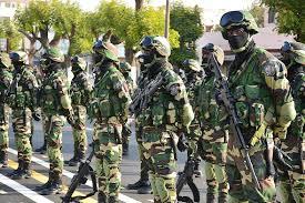 """GAMBIE : Le Sénégal """"désigné"""" pour conduire d'éventuelles opérations militaires"""