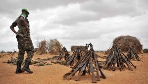 La CIJ compétente pour une dispute frontalière entre le Kenya et la Somalie