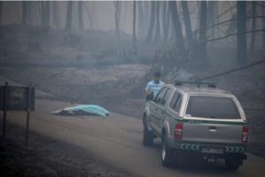 Portugal: au moins 62 morts dans l'incendie de forêt, selon un nouveau bilan