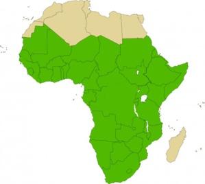 Perspectives pour l'économie mondiale - Afrique subsaharienne : Un redressement généralisé, mais pour combien de temps ?