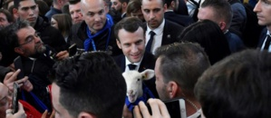 La politique pour les nuls: lettre ouverte au Président de la République Française