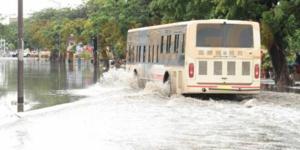 Transports : Dakar Dem Dikk suspend toutes ses lignes de banlieue
