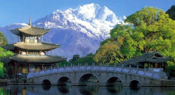 """""""Civilisation écologique"""" : la COP15 de la Convention sur la diversité biologique prévue à Kunming en 2021"""