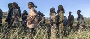 En Éthiopie, le pouvoir et les rebelles revendiquent des victoires au Tigré