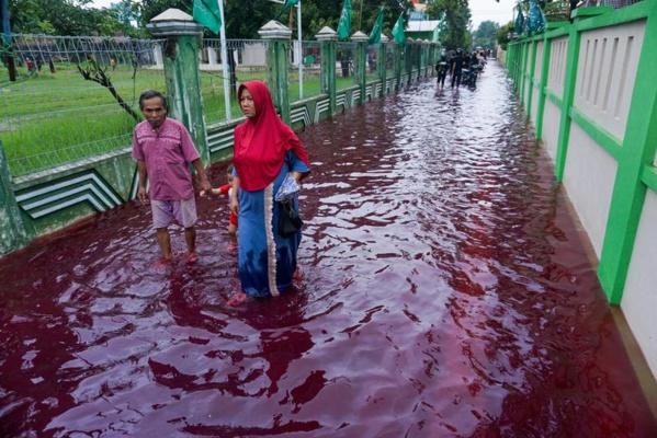 Indonésie : 44 morts dans des inondations sur l'île de Florès