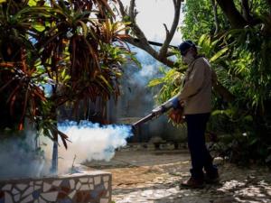 Le paludisme officiellement éradiqué en Chine