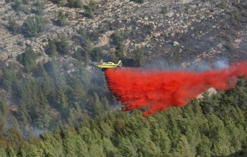 Israël: les incendies se propagent vers des colonies de Cisjordanie