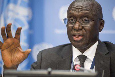 Intervention militaire en Gambie : La résolution présentée par le Sénégal votée aujourd'hui après avoir été corrigée