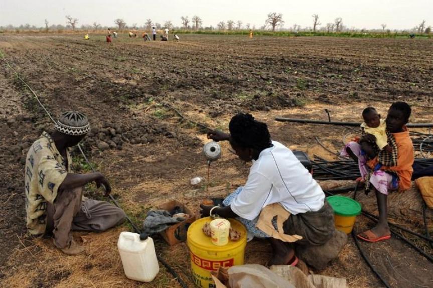 Risque de famine dans le monde rural: Le gouvernement va finalement à Canossa !