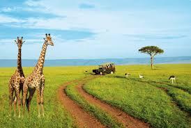 Les touristes africains sont en passe de devenir le moteur du tourisme en Afrique, selon un rapport de la CNUCED