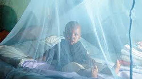 Lutte contre le paludisme : Le PNLP lance le projet Centre