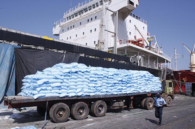 Enquête sur la tyrannie du riz au Sénégal : 445 milliards de francs CFA d'importations sur 20 mois