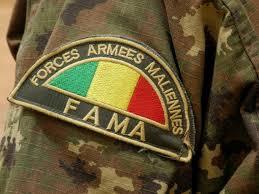 Cinq soldats maliens tués dans une embuscade