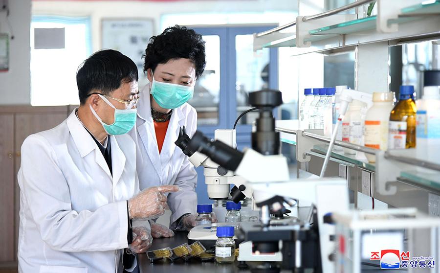 Aucun cas de COVID-19 en Corée du Nord : système de réfrigération de produits prophylactiques en bonne fonction (communiqué)