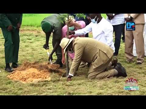 Le Président Sall à la journée de l'arbre au Cicad