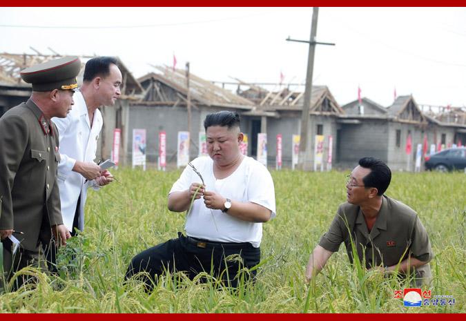 Le Président Kim Jong Un au chantier de réparation des dégâts de l'inondation (ATCC)