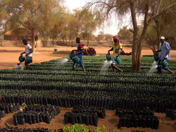 Défi climatique: comment les syndicats peuvent-ils accompagner les efforts du Sénégal dans sa transition énergétique ? (Equaltimes)