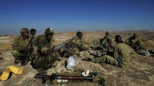 L'Érythrée admet la présence de ses troupes au Tigré