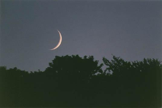 Umma Calender, pour en finir avec les vieilles lunes