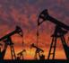 Pétrole: l'Opep+ prolonge en juillet ses coupes drastiques de production