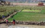 Politiques et tensions foncières : L'Afrique alerte contre ses propres risques
