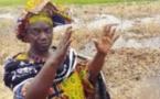 La rizicultrice Korka Diaw distinguée au Maroc