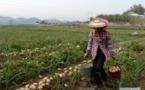 Chine : 13 millions de personnes sorties de la pauvreté chaque année depuis 2013
