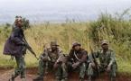 RDC: 64 personnes tuées par une milice soutenue par l'armée au Kasaï