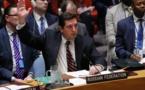 Syrie/chimique: veto russe à l'ONU à un projet de résolution américain