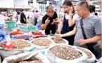 Comment l'agriculture spécifique aide les agriculteurs chinois à sortir de la pauvreté