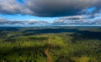 REPORTAGE - Quand la déforestation transforme l'Amazonie en baril de poudre