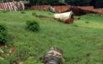 Attentat déclencheur du génocide au Rwanda: décision le 3 juillet sur la validité du non-lieu
