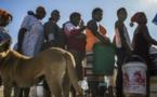 45 millions de personnes menacées par la famine en Afrique australe