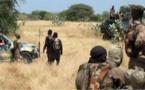 Somalie : au moins 61 terroristes d'al Shabab tués par l'armée