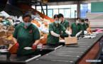 675 millions de colis ont été traités en Chine lors de la Fête des célibataires