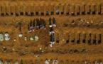 BRESIL : Un nouveau record de 3251 morts de la COVID-19 en 24 heures