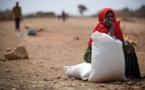 Crise mondiale : L'insécurité alimentaire plus élevée en 2020