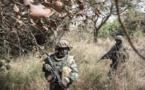 Casamance : c'est le retour au calme
