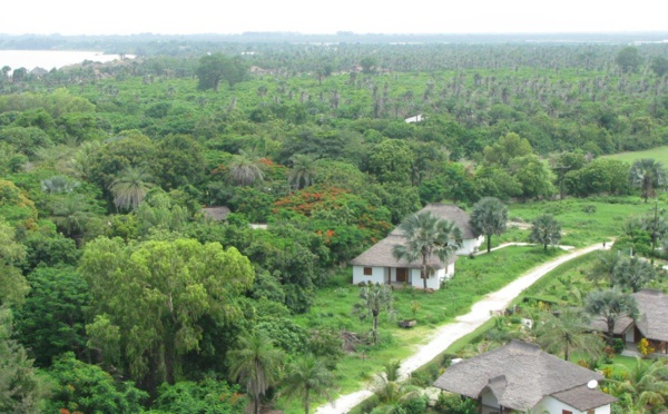 Le drame de Boffa nous ramène à la triste réalité : l'insécurité règne encore en Casamance