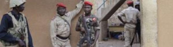 NIGER: 24 terroristes tués lors d'une tentative d'évasion (gouvernement)