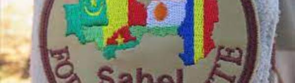 G5-SAHEL : les premiers exercices de la composante police ont débuté à Niamey